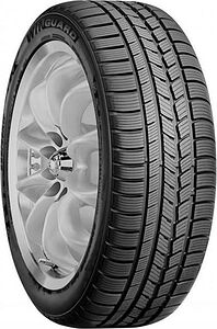Шины Roadstone Winguard Sport